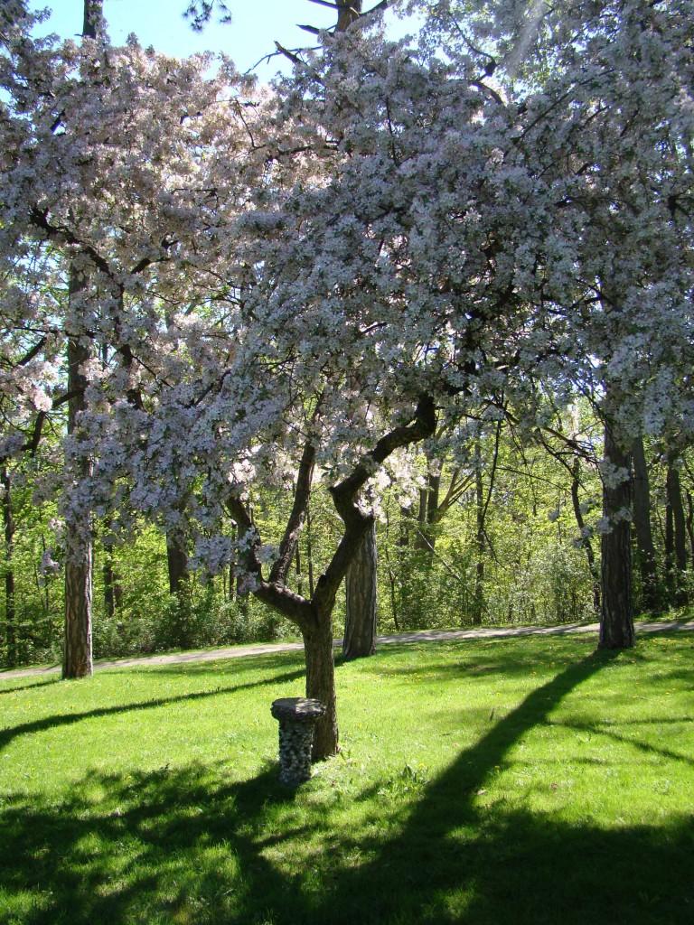 Canada - Springbank Park