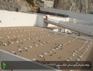 Maqbarat-Al-malat (5)